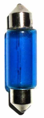 31mm Blue